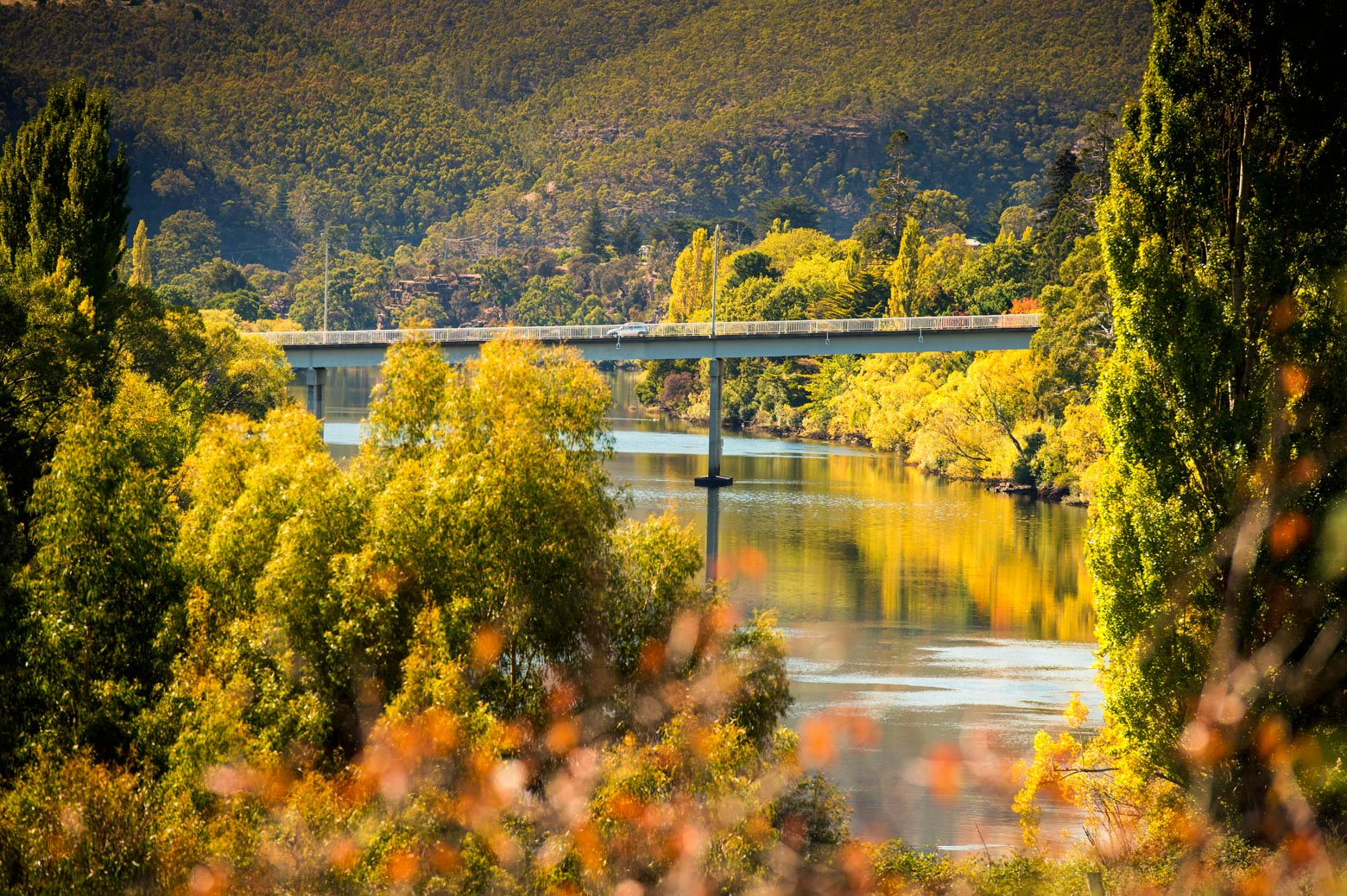 Enjoy the autumn colours on your Derwent Valley Road Trip in Tasmania