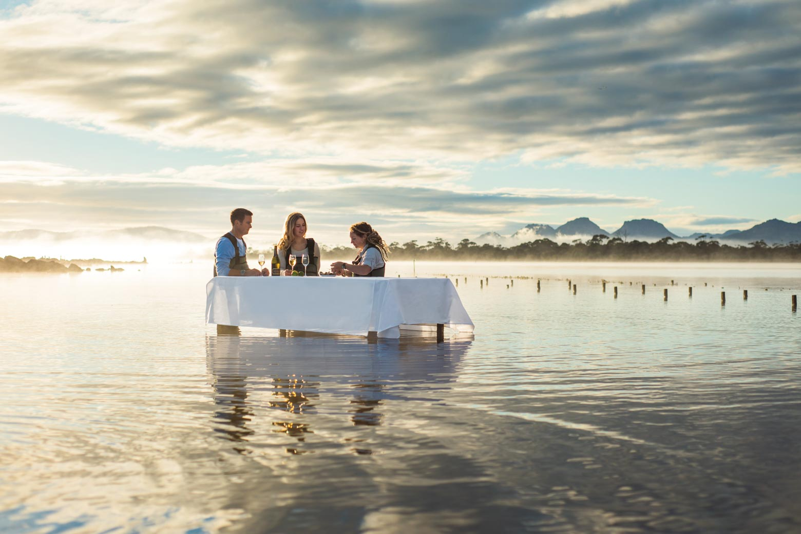 Enjoy oysters on your Lap of Tasmania road trip