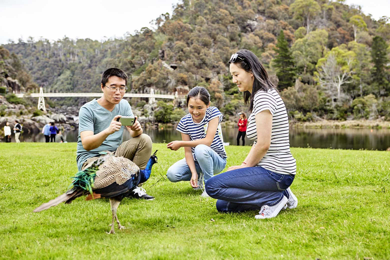 Relax on the grass at Cataract Gorge on your Lap of Tasmania road trip