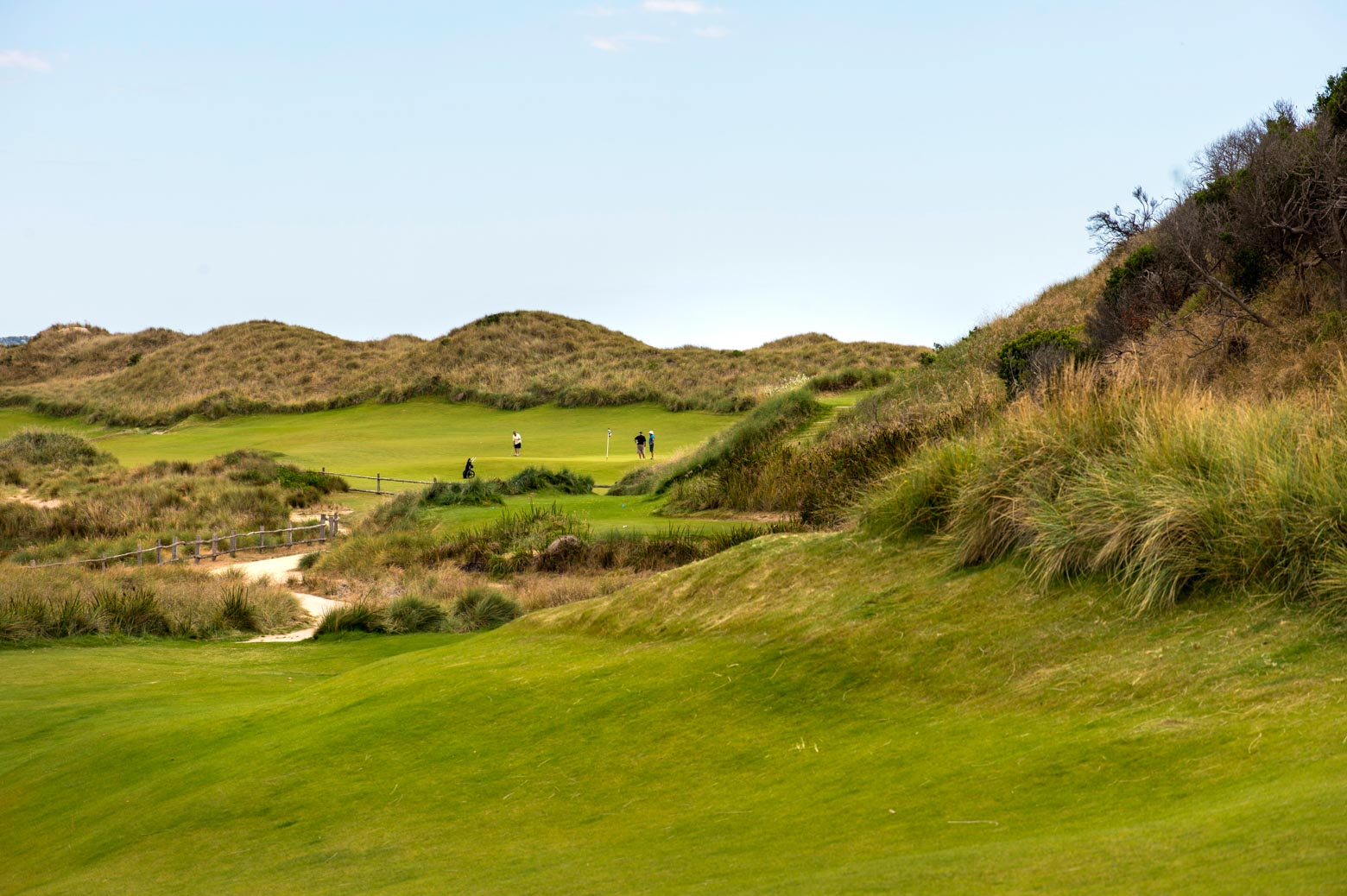 Play gold at Barnbougle Dunes on your Lap of Tasmania road trip