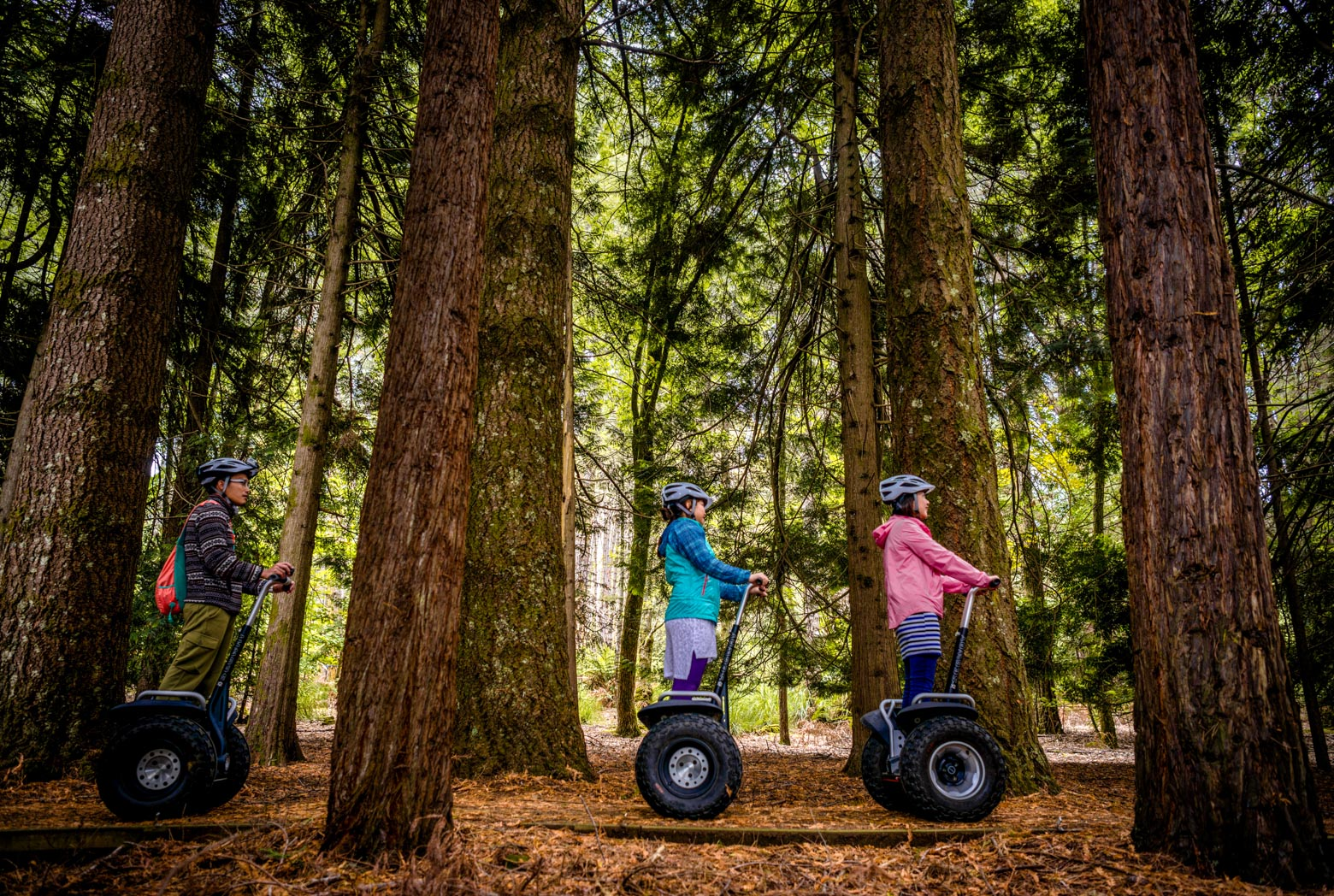 Have fin on Segways at Hollybank Treetops Adventure on your Lap of Tasmania road trip