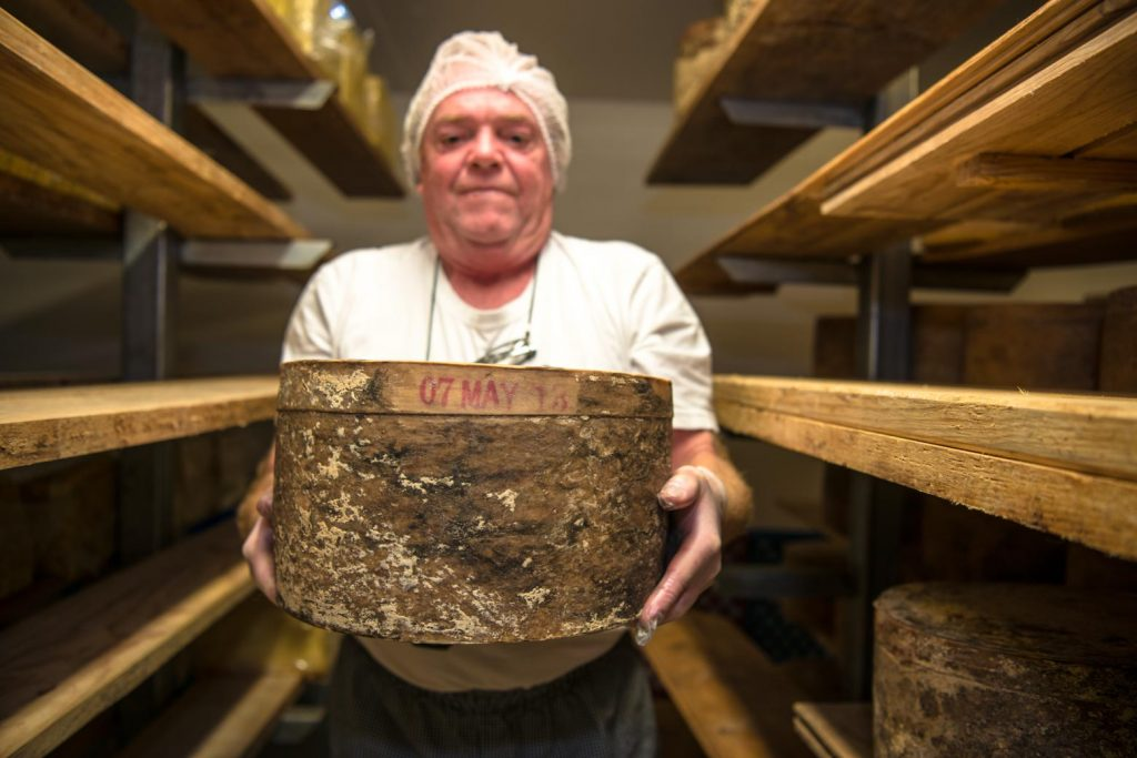 Try the cheese at Pyengana Dairy Company on your Lap of Tasmania road trip