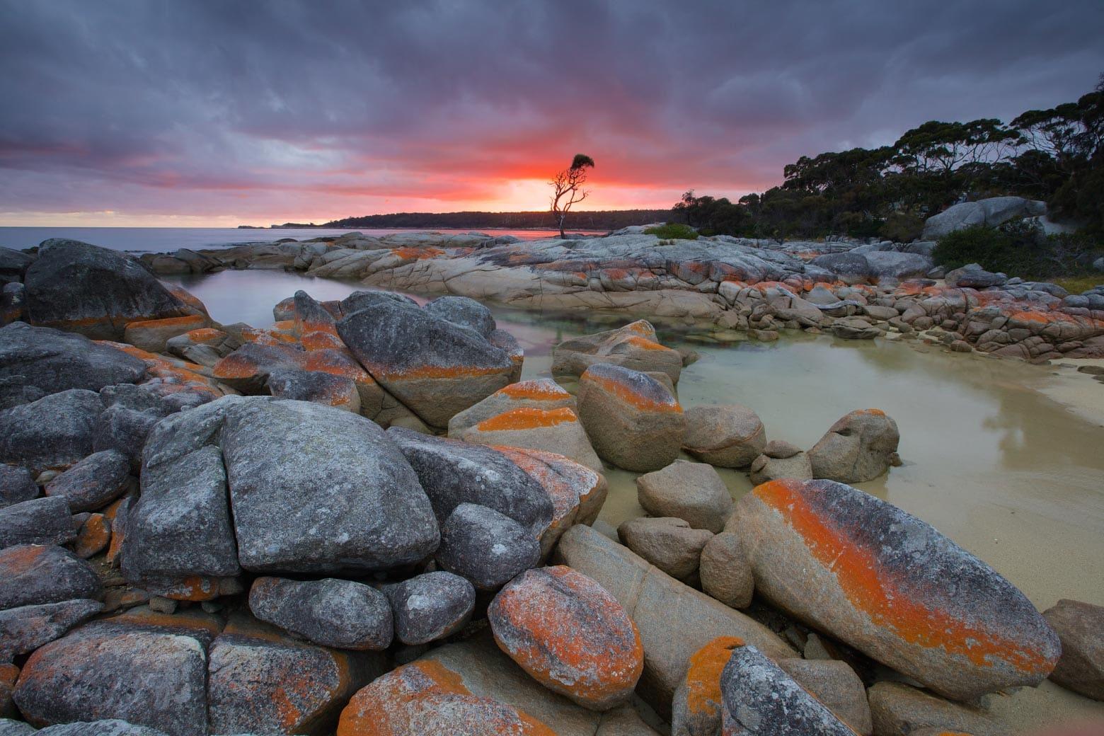 Binalong Bay at the Bay of Fires - Tasmania Road Trip