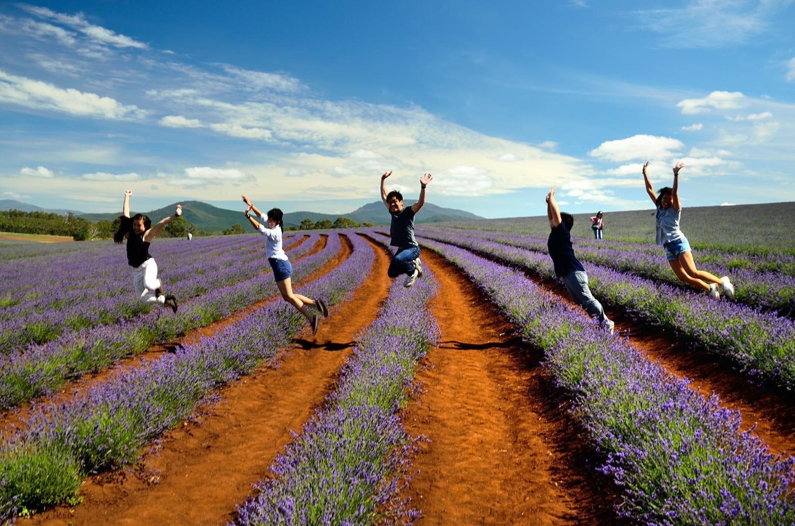 Bridestowe Estate - Tasmania itinerary (7 days)