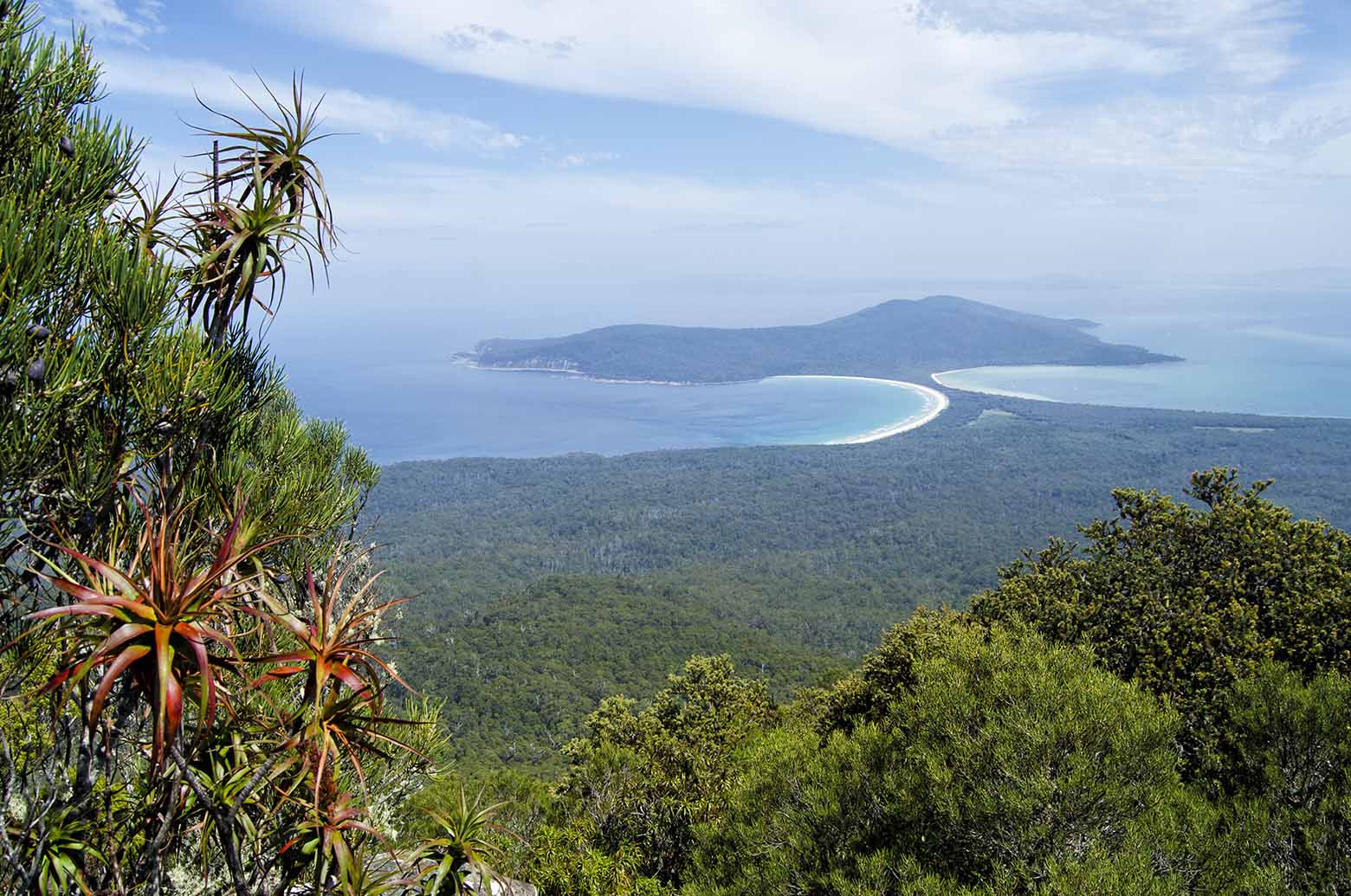 Sweeping views from Mt Maria on Maria Island