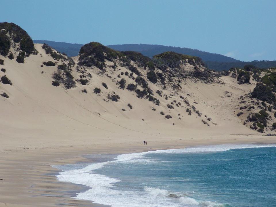 Crescent Bay Beach (Tasman Peninsula)