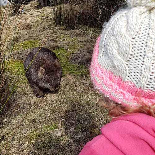 _KB Tasmania Trip Report 6