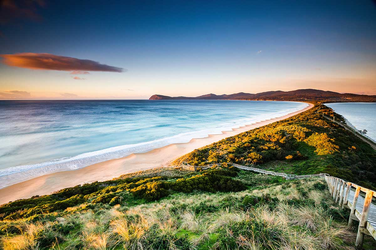 Capture incredible images at 'The Neck' with Tassie Tours