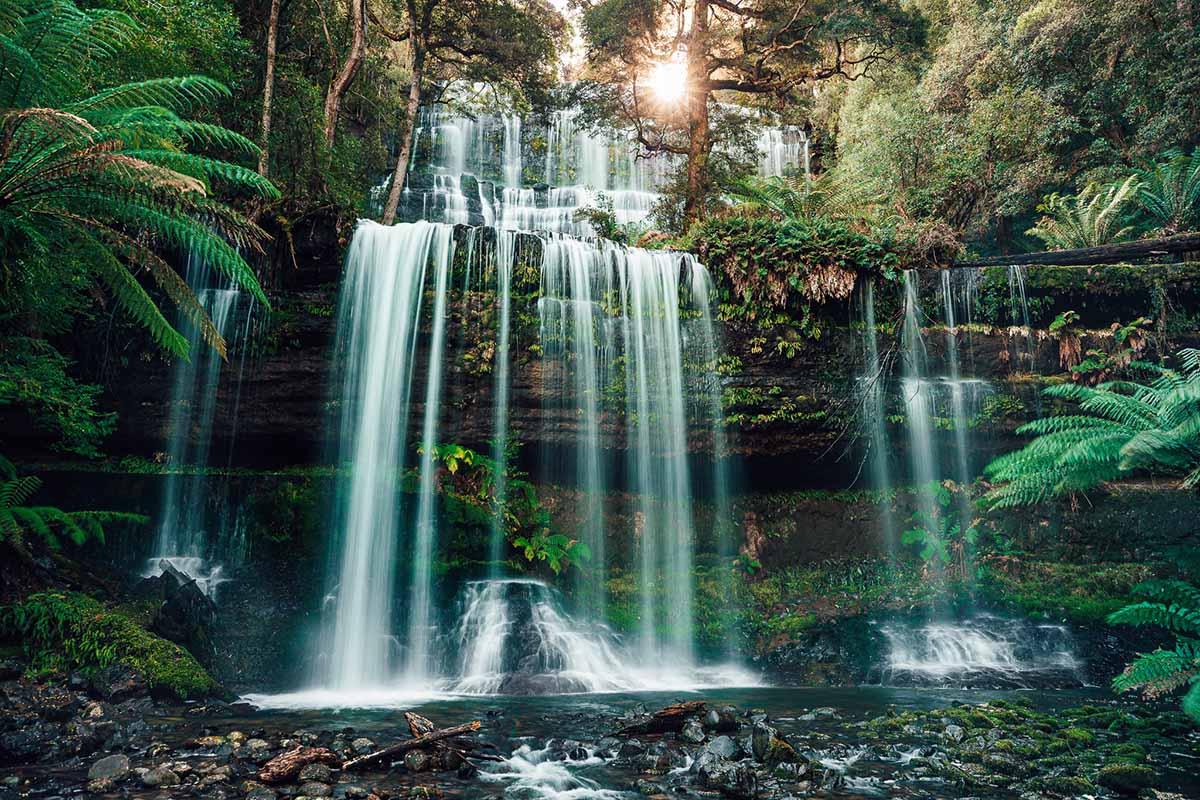 Russell Falls (Mt Field NP)