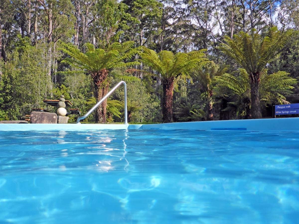 Hastings Caves and Thermal Springs - Thermal Swimming Pool