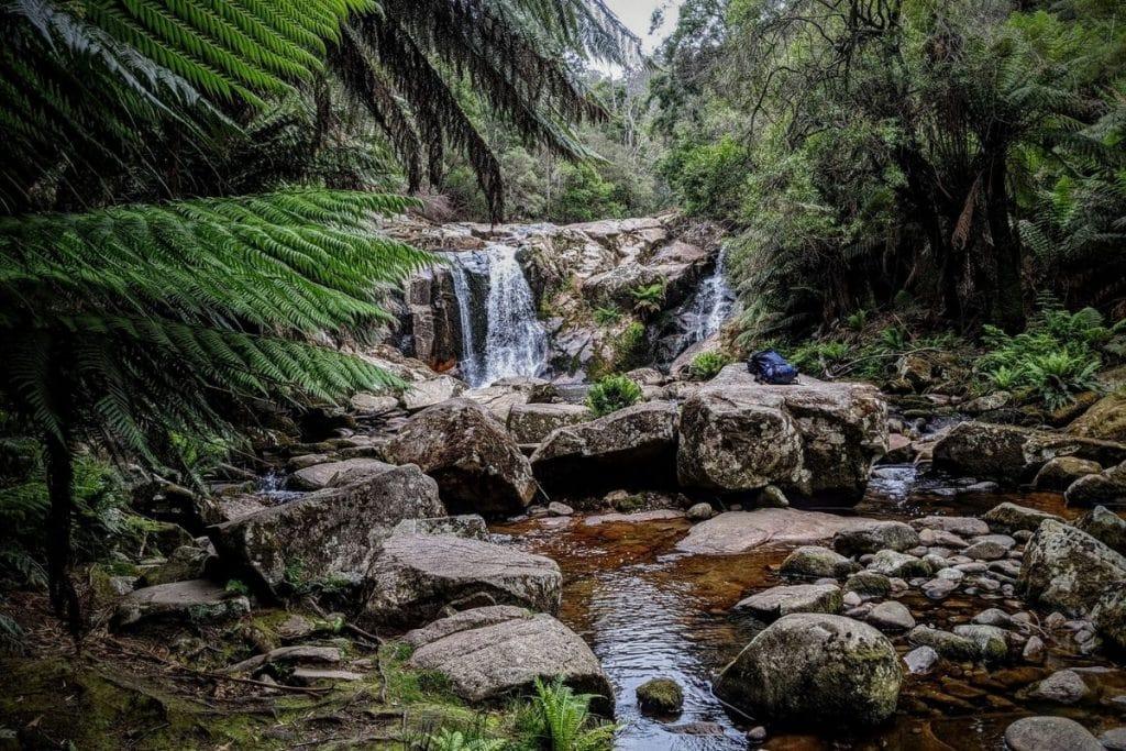 Halls Falls - Pyengana Tasmania