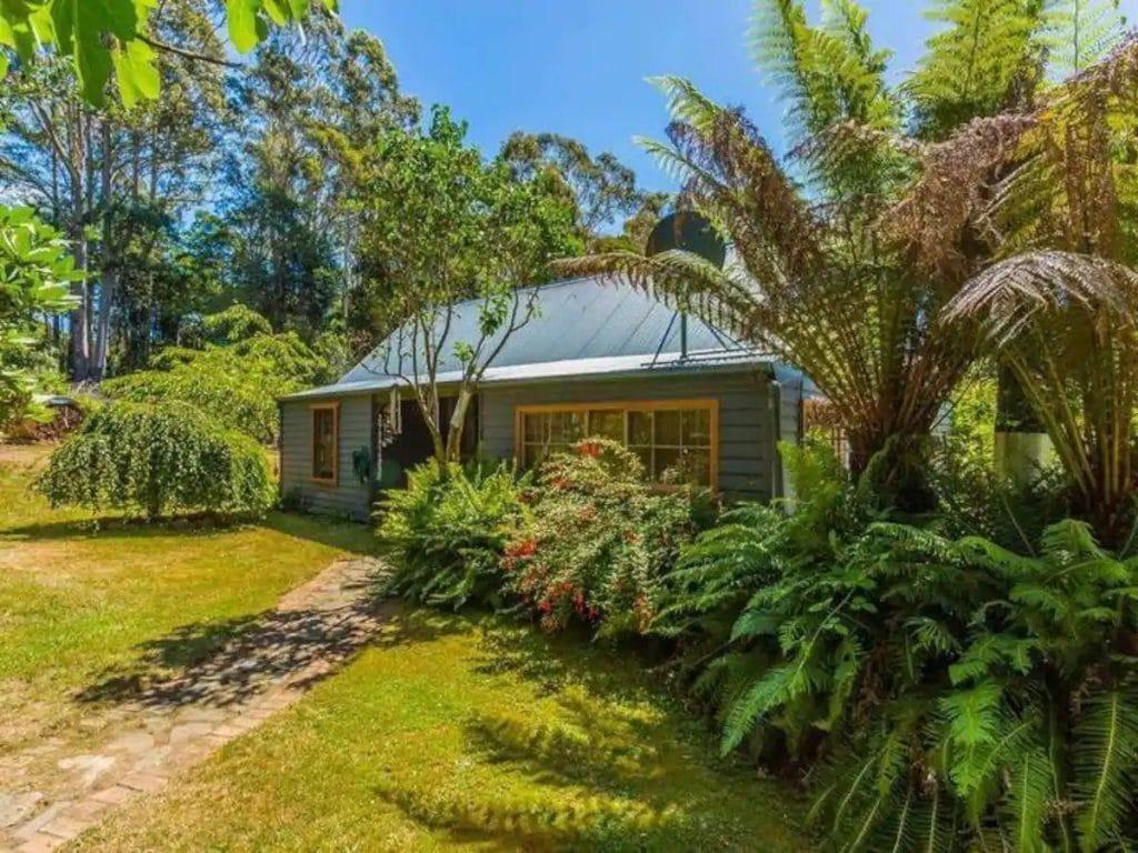 Peaceful Getaway - Weldborough Tasmania