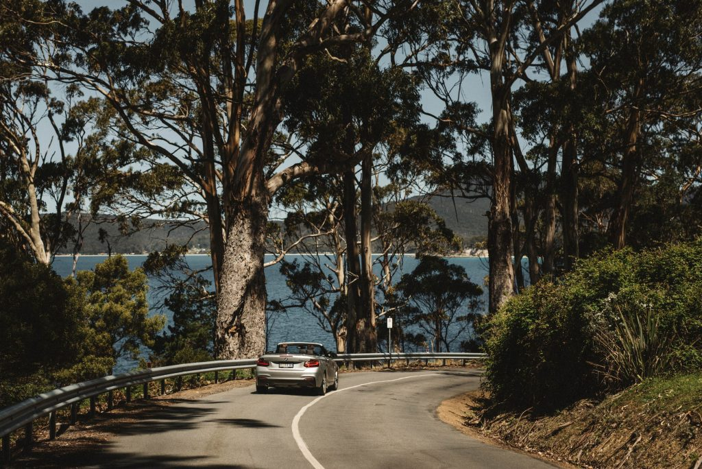 Overdrive car rental driving through Tasmania forest