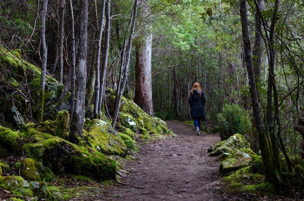 Sphinx Rock is one of the best short walks in Tasmania