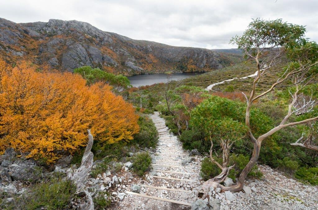 Best Short Walks in Tasmania - Crater Lake Loop Walk