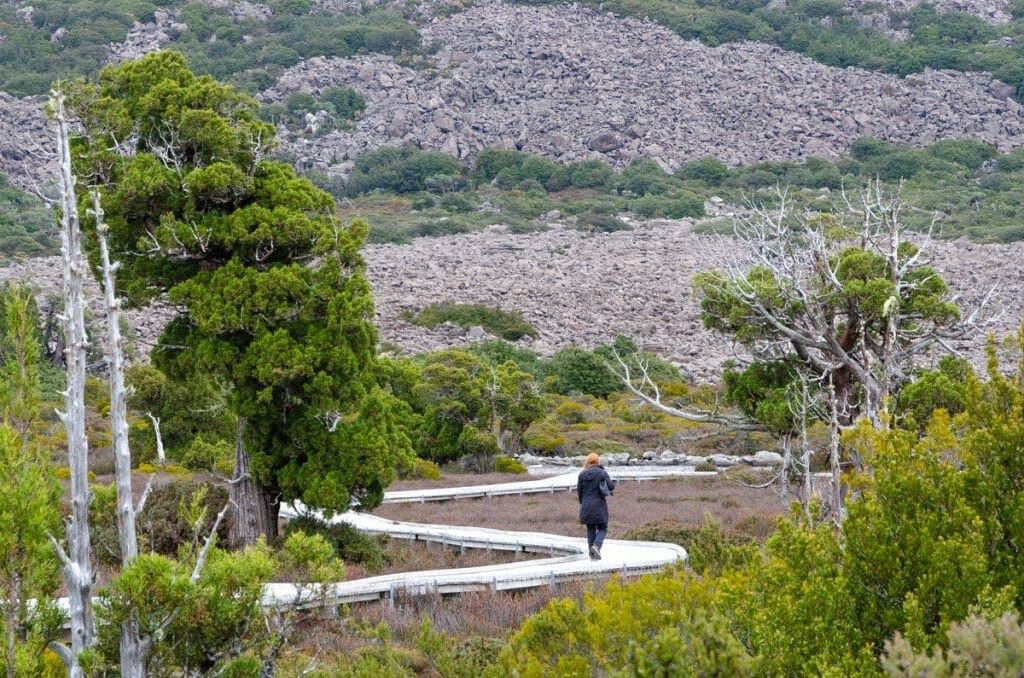 Pine Lake Walking Trail