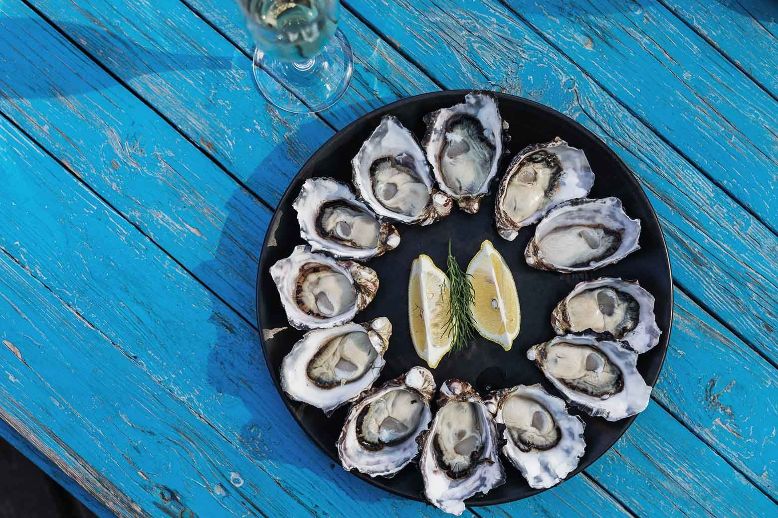 Taste a platter ofoysters on Bruny Island Tours from Hobart