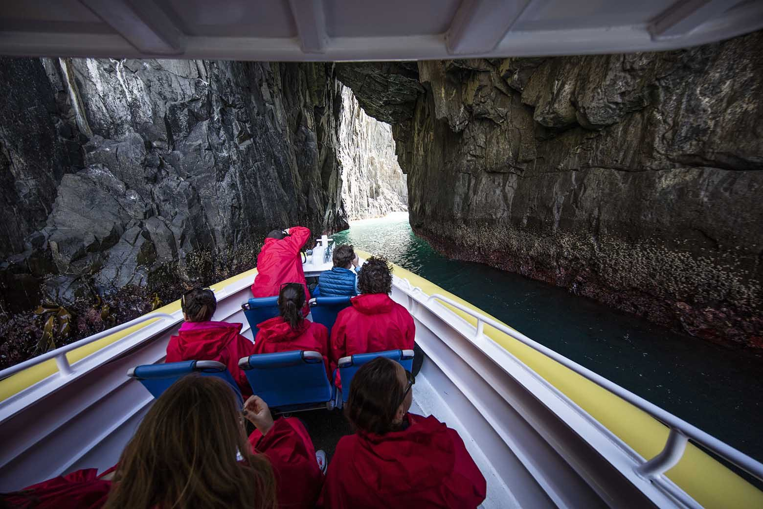 Cruise inside a cave on Bruny Island Tours from Hobart