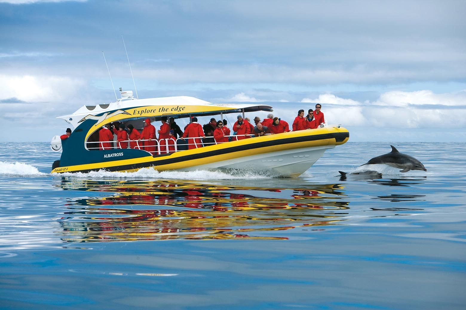 Go on a cruise on Bruny Island Tours from Hobart
