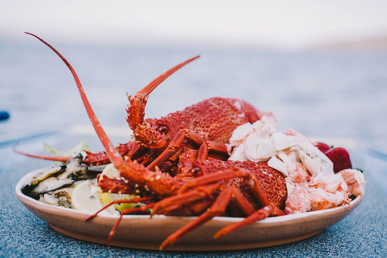 Taste fresh crayfish on Bruny Island Tours from Hobart